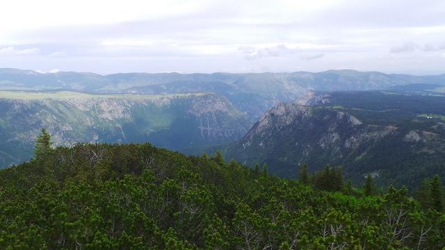 Kanion Tary widziany z Durmitoru